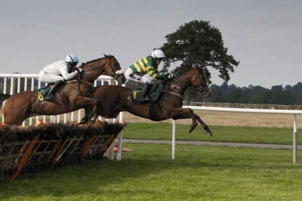 3910343289 f66019708f o 600x400 - A Guide To British Horse Racing – What's All The Fuss With Ascot, Cheltenham and Aintree