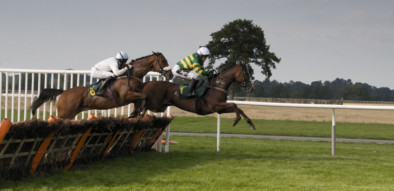 3910343289 f66019708f o - A Guide To British Horse Racing – What's All The Fuss With Ascot, Cheltenham and Aintree